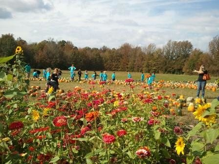 Mississippi Pumpkin Patches, Corn Mazes, Hayrides